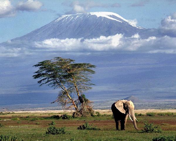 kilimanjaro1